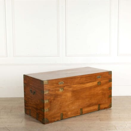 19th Century Camphor Wood Trunk CB058553