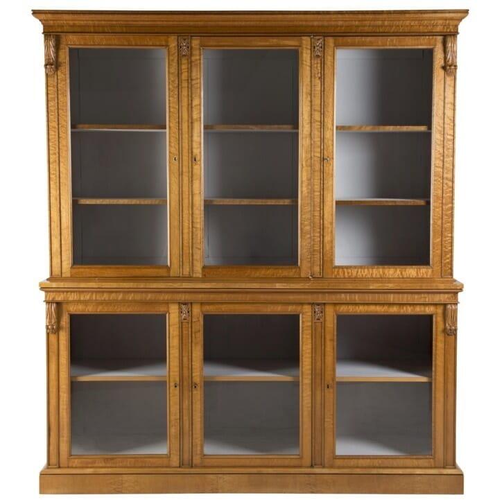 Birds Eye Maple Glazed Bookcase