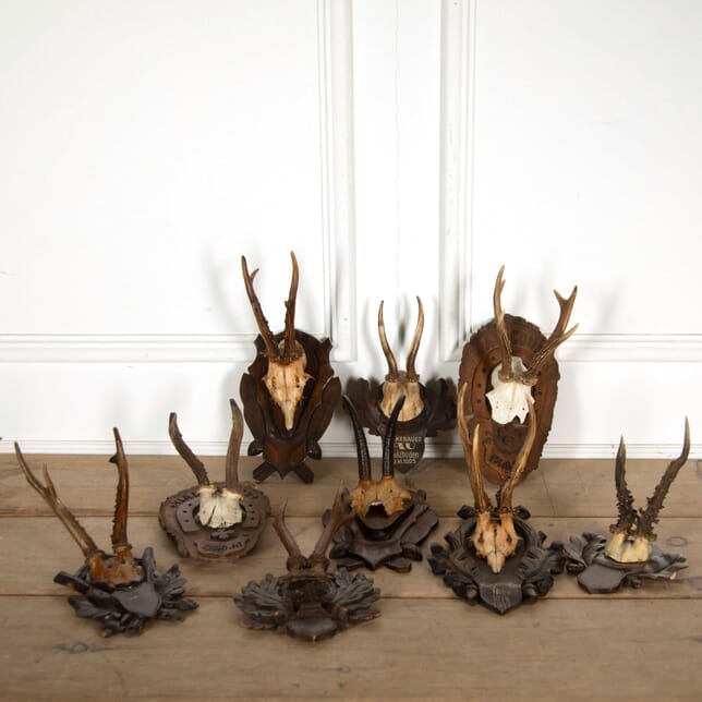 Collection of 9 Shooting Trophies DA138353