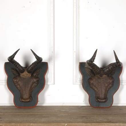 19th Century Carved Wood Antelope Trophies DA3713112