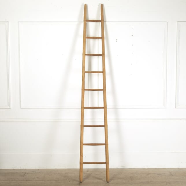 19th Century Faux Bamboo Library Ladder DA0212061