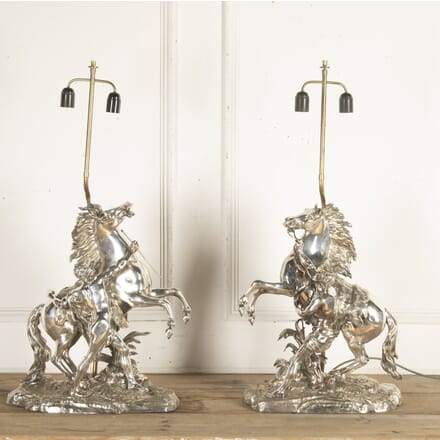 Pair of 19th Century Silvered Bronze Marly Horse Lamps LT8715688