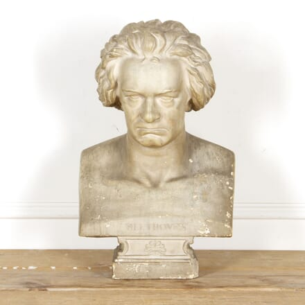 19th Century Library Bust DA0817055
