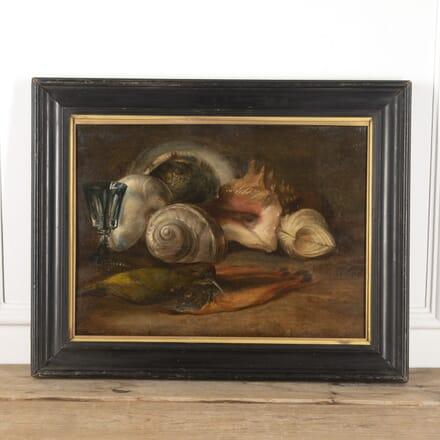 19th Century Still Life Of Shells WD6016548