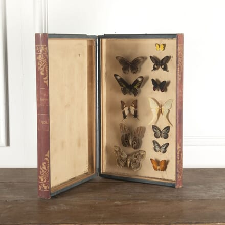 Antique Faux Leather Large Lepidoptera DA7712877