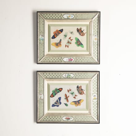 Chinese Butterfly Paintings WD7612805