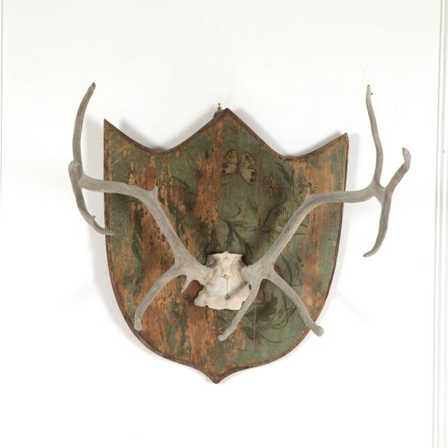 Decorative Antler Trophy DA1512979