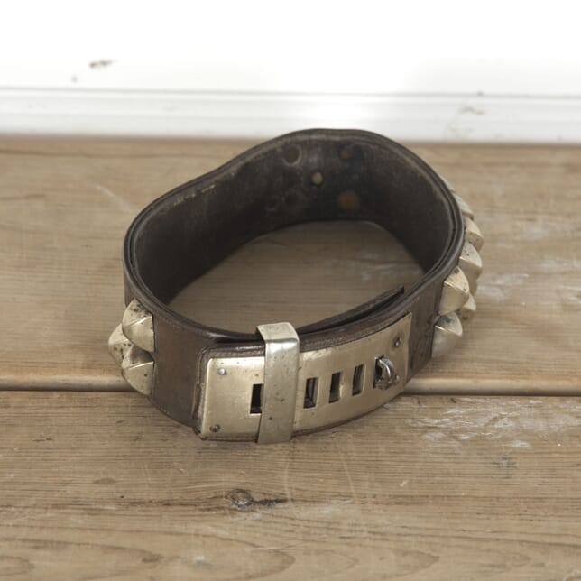 French 19th Century Dog Collar DA3713113
