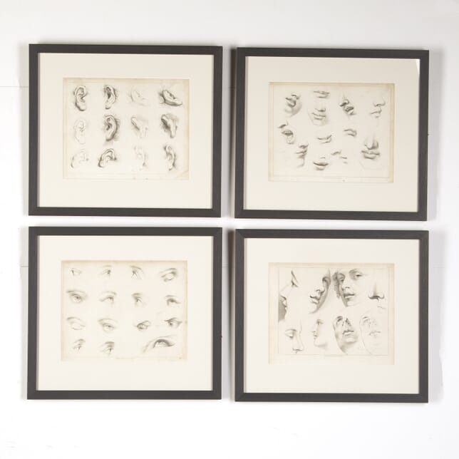 Set of Four Framed Engravings of Facial Features from Ackermann's 'Cabinet of Arts' WD8015115