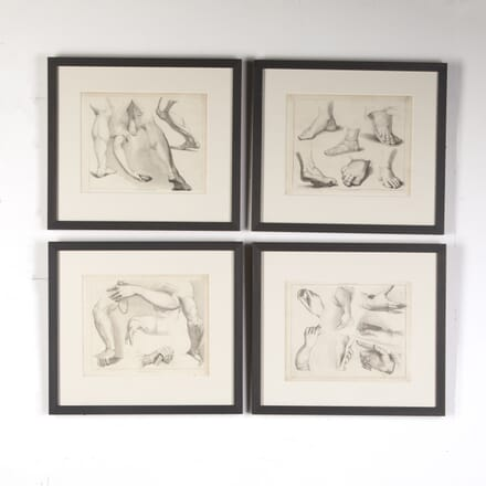 Set of Four Engravings of Limbs from Ackermann's 'Cabinet of Arts' WD8015118