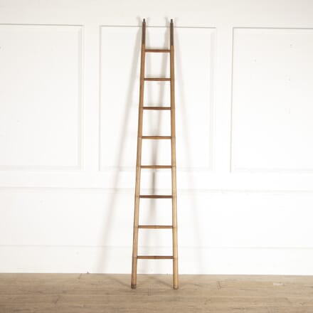 Ash Library Ladder OF5213602