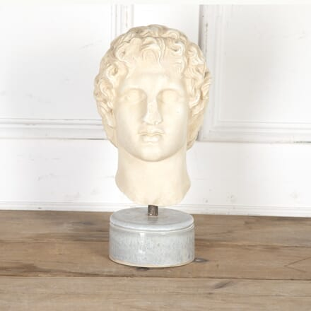 Plaster Bust of Alexander The Great DA4016737