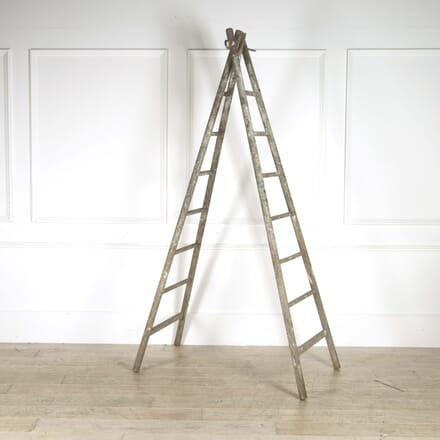 Decorators Ladder OF529263