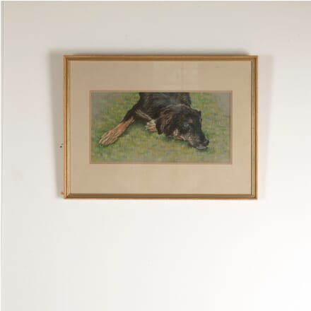 Framed Watercolour of a Lurcher WD1311136
