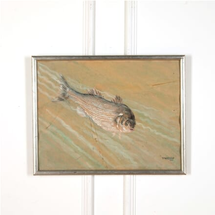 French Watercolour of a Fish WD7310405