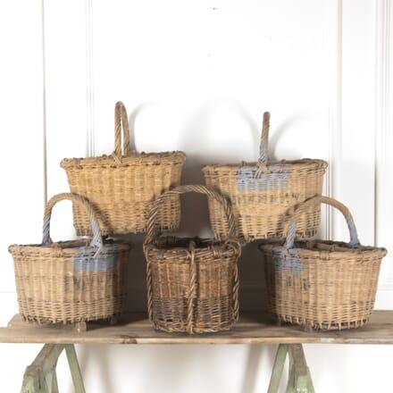 French Wicker Bottle Basket DA4414088