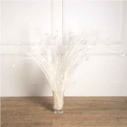 Large Bouquet of Rare Albino Peacock Tail Feathers GA6810359