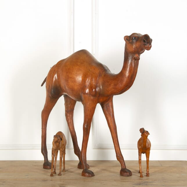 Leather Camels OF738863