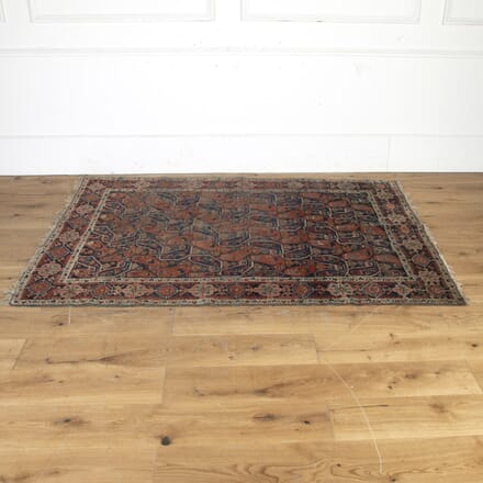 North-East Persian Rug RT4315172