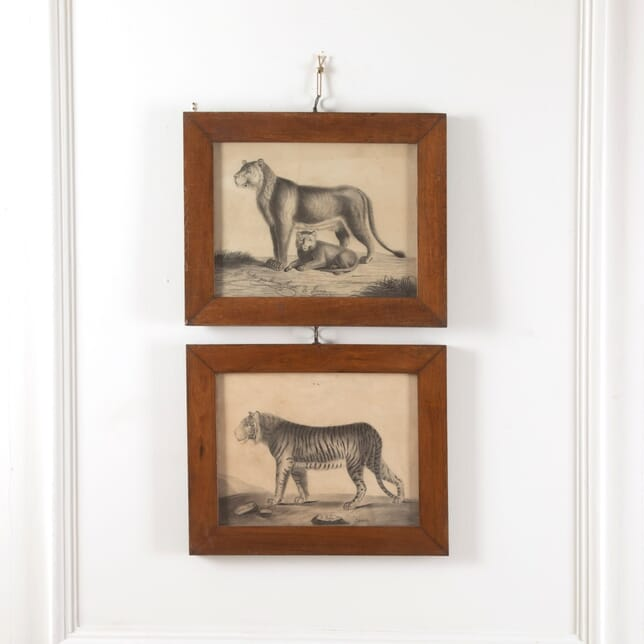 Pair of 19th Century Etchings Of A Lion And A Tiger WD6011506