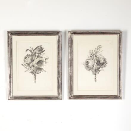 Pair of Botanical Engravings WD7615189