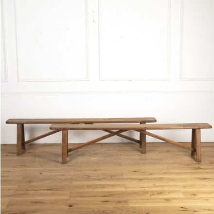 Pair of French 19th Century Cherrywood Benches SB8516203