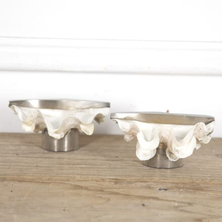 Pair of Clam Shell Dishes DA1515263