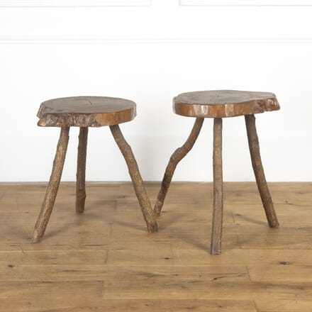 Pair of English Tree Trunk Tables TC8116830