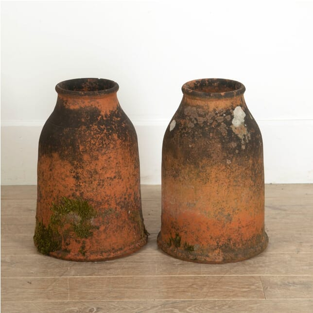 Pair of Victorian Rhubarb Forcers GA0911495