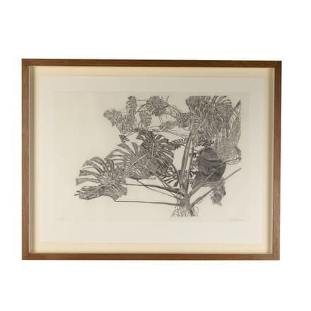 """Philodendron"" Aquatint by Sam Szafran WD7616430"