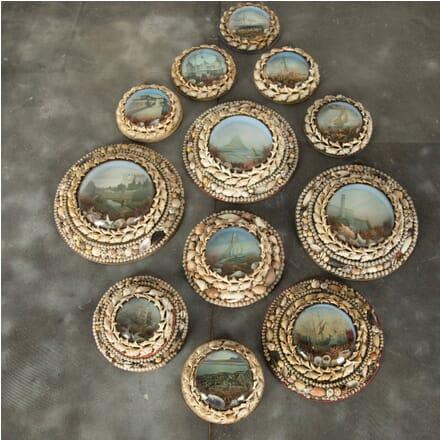 Seashell Diorama Collection DA3510928