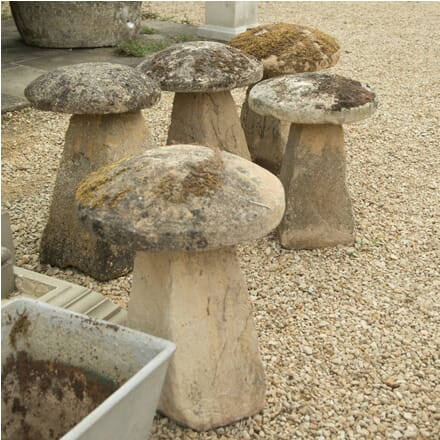 Set of Five Staddle Stones GA4210159
