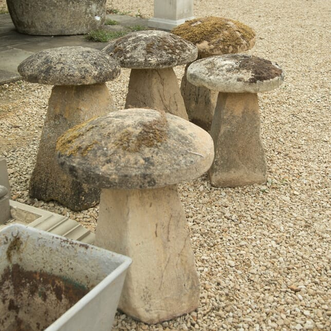 Set of Five Staddle Stones GA4210159