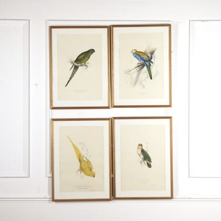 Set of Four 19th Century Bird Prints by E Lear WD8816070
