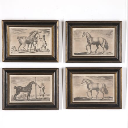 Set of Four 19th Century Horse Prints WD0215426