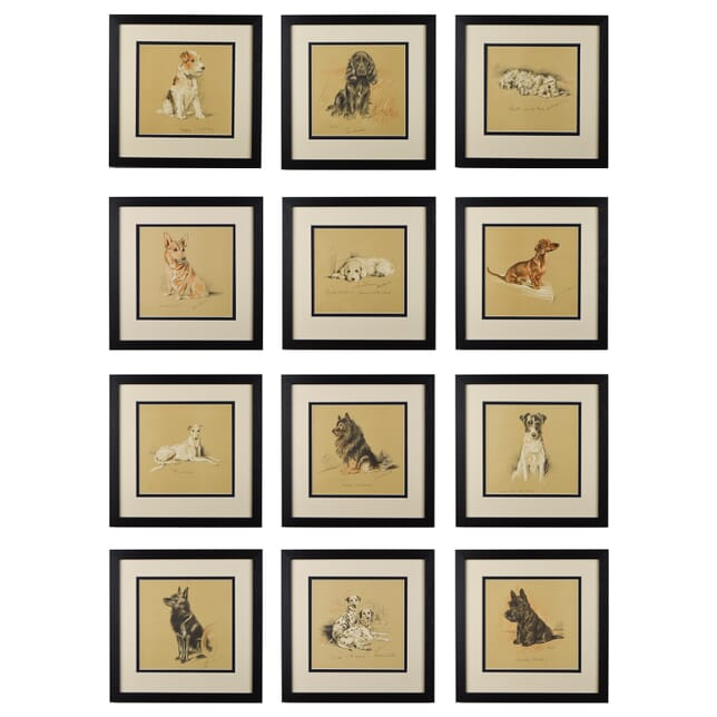 Set of Twelve Dogs by Lucy Dawson WD6014659