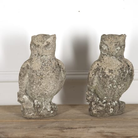 Pair of Stone Owls DA1314942