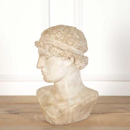 Plaster Bust of Athena GA558669