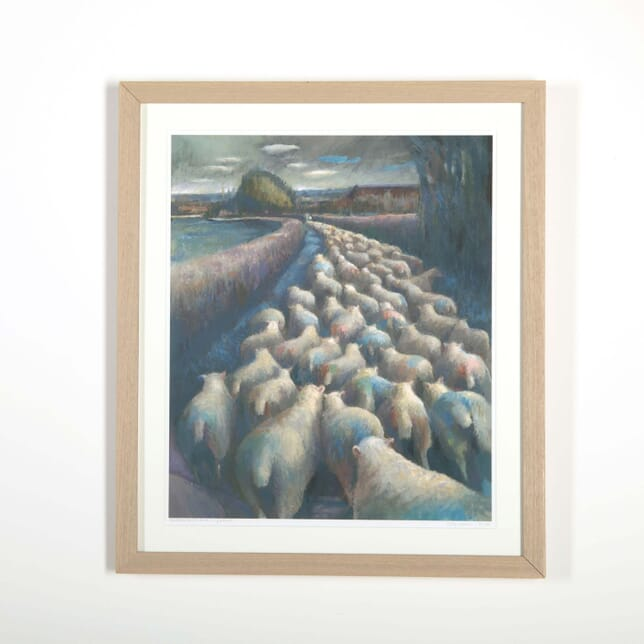 Raddled Ewes Back to Pasture by Kate Lynch WD288518