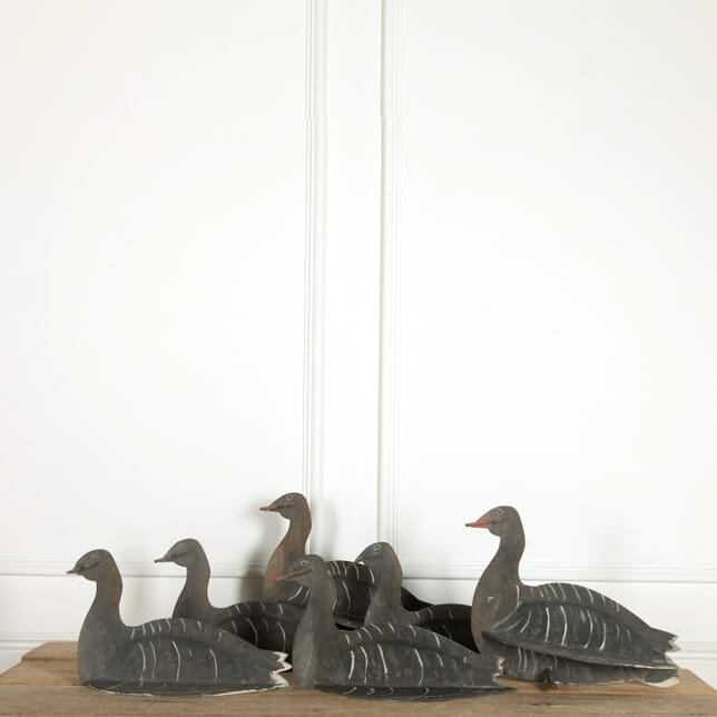 Set of 6 Early 20th Century English Decoy Geese DA448902