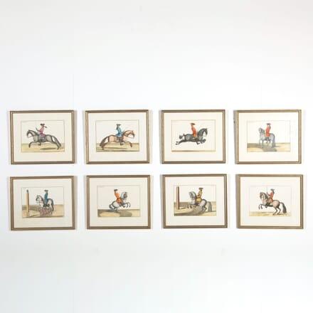 Set of 8 Equestrian Prints DB998809