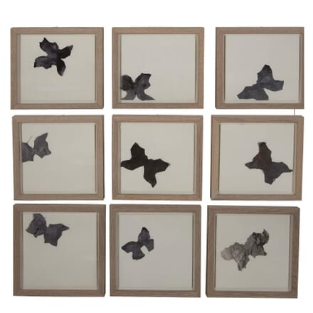 LEPIDOPTERES - set of 9 butterfly collages by Turco WD2962140
