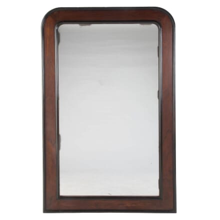 Large 19th Century Mirror MI157930