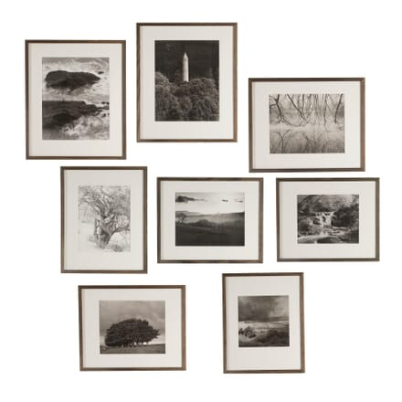 Collection of Eight Black & White Photographs by Members of The Photographers Gallery WD287421