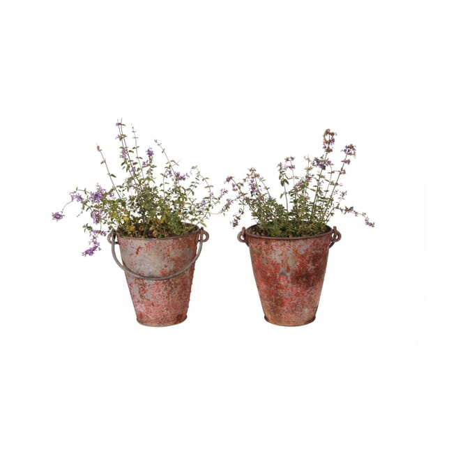 Edwardian Rivetted Fire Buckets DA010098