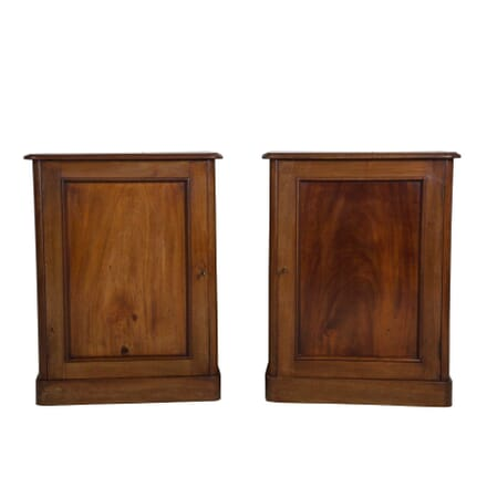Pair of 19th Century Bedside Cupboards OF1055273