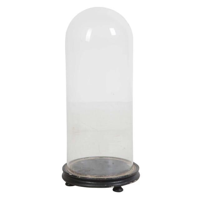 Victorian Glass Taxidermy Dome DA449763