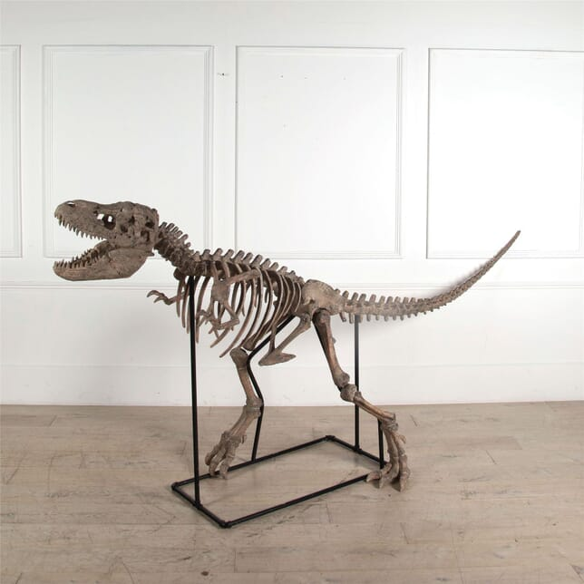 Adult T Rex Skeleton DA2562143