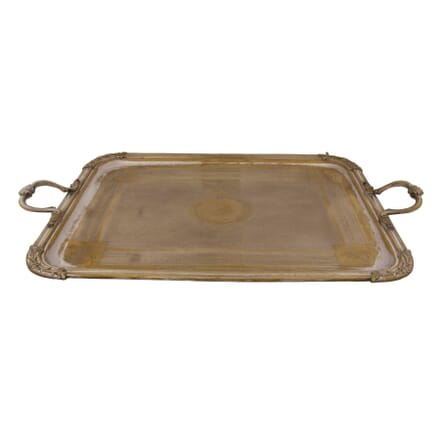 Fabulous Serving Tray DA1559572