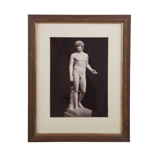 Photograph of a Classical Figure WD3956890